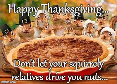 Thanksgiving advice... |  Happy Thanksgiving... Don't let your squirrely relatives drive you nuts... | image tagged in thanksgiving,squirrely,relatives,nuts | made w/ Imgflip meme maker