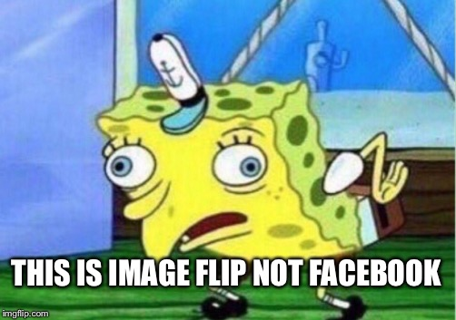 THIS IS IMAGE FLIP NOT FACEBOOK | image tagged in memes,mocking spongebob | made w/ Imgflip meme maker