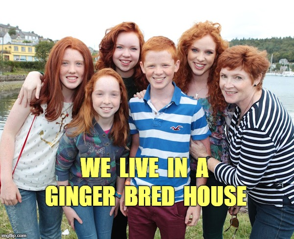 Live in a Ginger Bred House | WE  LIVE  IN  A GINGER  BRED  HOUSE | image tagged in redhead family,redheads,gingers,gingerbread,funny memes | made w/ Imgflip meme maker