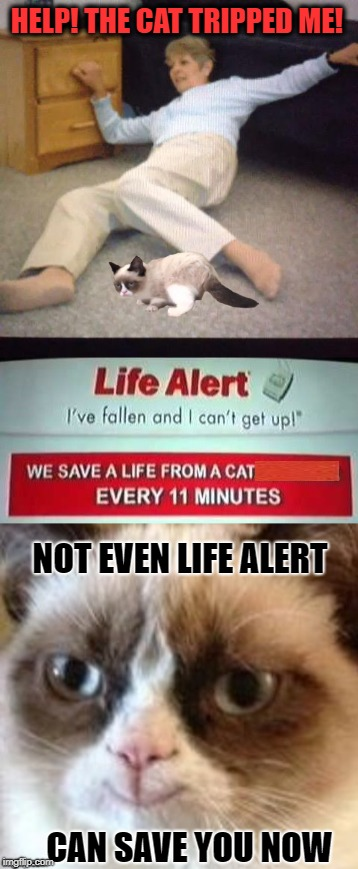 Life Alert | HELP! THE CAT TRIPPED ME! NOT EVEN LIFE ALERT CAN SAVE YOU NOW | image tagged in funny memes,funny,cat,grumpy cat,cat memes | made w/ Imgflip meme maker