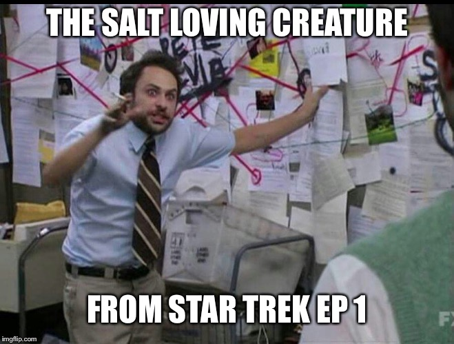 Trying to explain | THE SALT LOVING CREATURE FROM STAR TREK EP 1 | image tagged in trying to explain | made w/ Imgflip meme maker