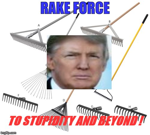 RAKE FORCE - TO STUPIDITY AND BEYOND! |  RAKE FORCE; TO STUPIDITY AND BEYOND ! | image tagged in trump is a moron,rake force,rake america great again,donald trump is an idiot,donald trump the clown,california fires | made w/ Imgflip meme maker