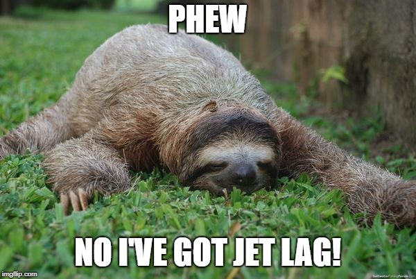 Sleeping sloth | PHEW NO I'VE GOT JET LAG! | image tagged in sleeping sloth | made w/ Imgflip meme maker
