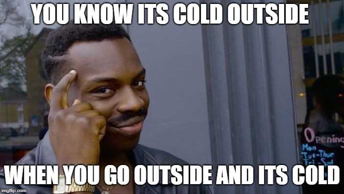 brains | YOU KNOW ITS COLD OUTSIDE WHEN YOU GO OUTSIDE AND ITS COLD | image tagged in memes,roll safe think about it | made w/ Imgflip meme maker