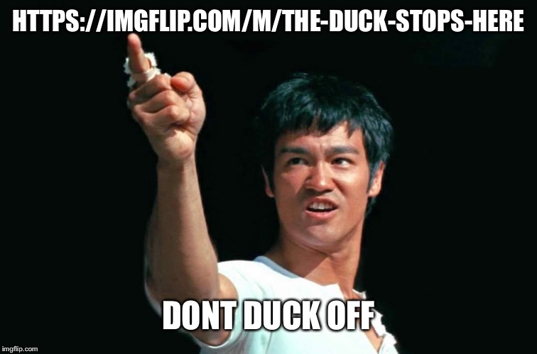 Bruce Lee Bastards | HTTPS://IMGFLIP.COM/M/THE-DUCK-STOPS-HERE DONT DUCK OFF | image tagged in bruce lee bastards | made w/ Imgflip meme maker