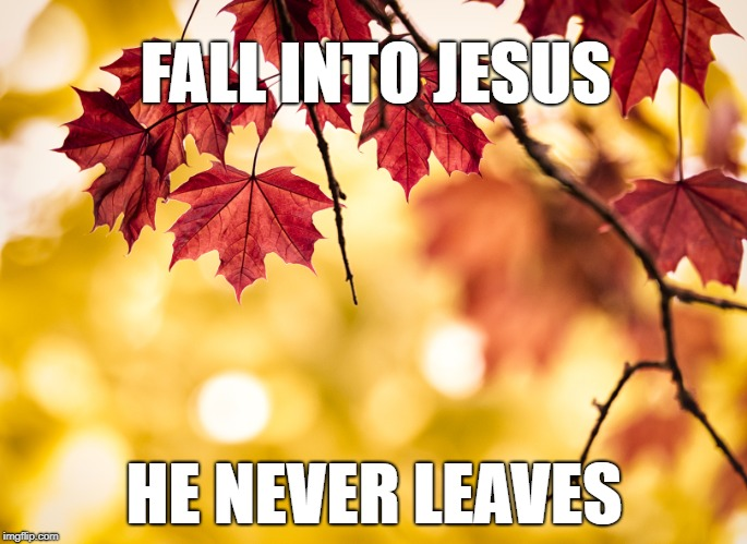 FALL INTO JESUS HE NEVER LEAVES | image tagged in fall | made w/ Imgflip meme maker