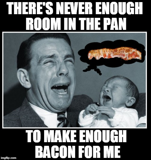 The Bacon Lovers Lament | THERE'S NEVER ENOUGH     ROOM IN THE PAN TO MAKE ENOUGH BACON FOR ME | image tagged in vince vance,i love bacon,bacon memes,reality bites,cooking bacon,father and baby crying | made w/ Imgflip meme maker