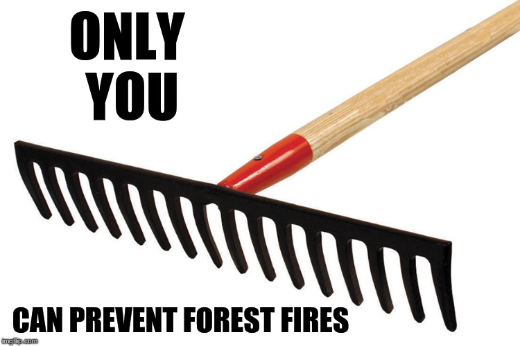 trump is an idiot | ONLY YOU CAN PREVENT FOREST FIRES | image tagged in donald trump,california fires | made w/ Imgflip meme maker