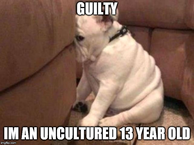 Guilty dog | GUILTY IM AN UNCULTURED 13 YEAR OLD | image tagged in guilty dog | made w/ Imgflip meme maker