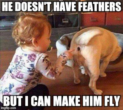 Poker in the rear | HE DOESN'T HAVE FEATHERS BUT I CAN MAKE HIM FLY | image tagged in funny memes,dogs,children,poke,ouch | made w/ Imgflip meme maker