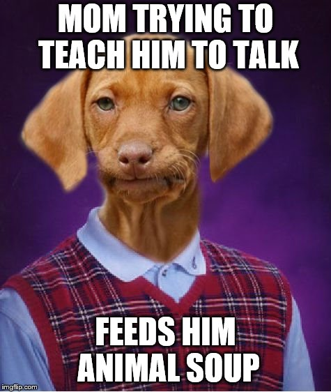 Bad Luck Raydog | MOM TRYING TO TEACH HIM TO TALK FEEDS HIM ANIMAL SOUP | image tagged in bad luck raydog | made w/ Imgflip meme maker