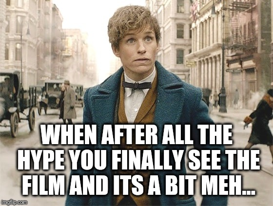 When you hype to early... | WHEN AFTER ALL THE HYPE YOU FINALLY SEE THE FILM AND ITS A BIT MEH... | image tagged in grindelwald,fantastic beasts and where to find them,memes,eddie | made w/ Imgflip meme maker