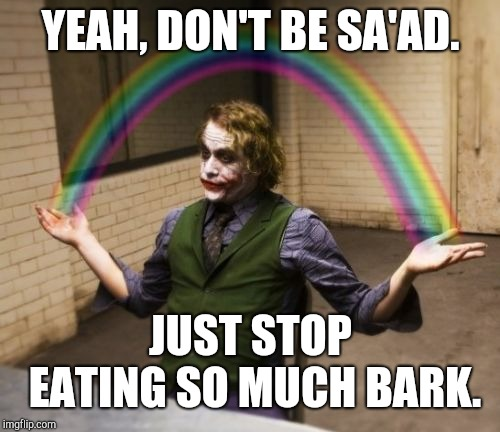 Joker Rainbow Hands Meme | YEAH, DON'T BE SA'AD. JUST STOP EATING SO MUCH BARK. | image tagged in memes,joker rainbow hands | made w/ Imgflip meme maker
