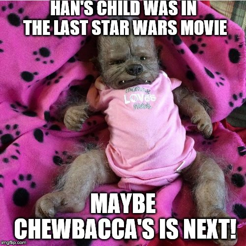 Chewbacca's Baby! | HAN'S CHILD WAS IN THE LAST STAR WARS MOVIE MAYBE CHEWBACCA'S IS NEXT! | image tagged in star wars,chewbacca,child | made w/ Imgflip meme maker