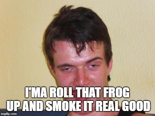 10 guy stoned | I'MA ROLL THAT FROG UP AND SMOKE IT REAL GOOD | image tagged in 10 guy stoned | made w/ Imgflip meme maker