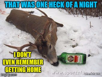 Drunk deer | THAT WAS ONE HECK OF A NIGHT I DON'T EVEN REMEMBER GETTING HOME | image tagged in drunk deer | made w/ Imgflip meme maker