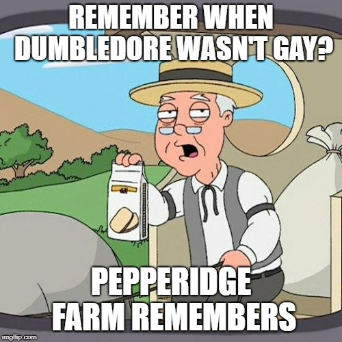 Pepperidge Farm Remembers | REMEMBER WHEN DUMBLEDORE WASN'T GAY? PEPPERIDGE FARM REMEMBERS | image tagged in memes,pepperidge farm remembers | made w/ Imgflip meme maker