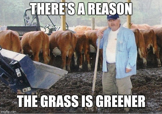 Manure | THERE'S A REASON THE GRASS IS GREENER | image tagged in manure | made w/ Imgflip meme maker