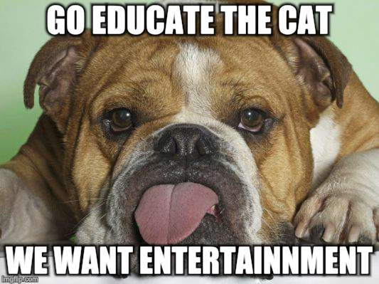 Blah Blah Blah.... | GO EDUCATE THE CAT WE WANT ENTERTAINNMENT | image tagged in memes,funny dogs,tongue,see no one cares | made w/ Imgflip meme maker