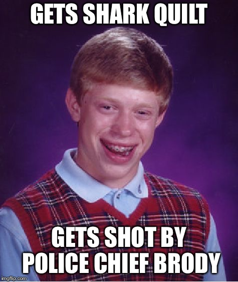 Bad Luck Brian Meme | GETS SHARK QUILT GETS SHOT BY POLICE CHIEF BRODY | image tagged in memes,bad luck brian | made w/ Imgflip meme maker