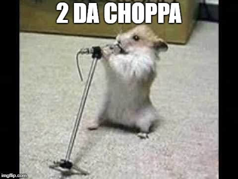 2 DA CHOPPA | image tagged in hamster | made w/ Imgflip meme maker