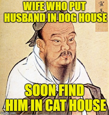 Confucius Says | WIFE WHO PUT HUSBAND IN DOG HOUSE SOON FIND HIM IN CAT HOUSE | image tagged in confucius says | made w/ Imgflip meme maker