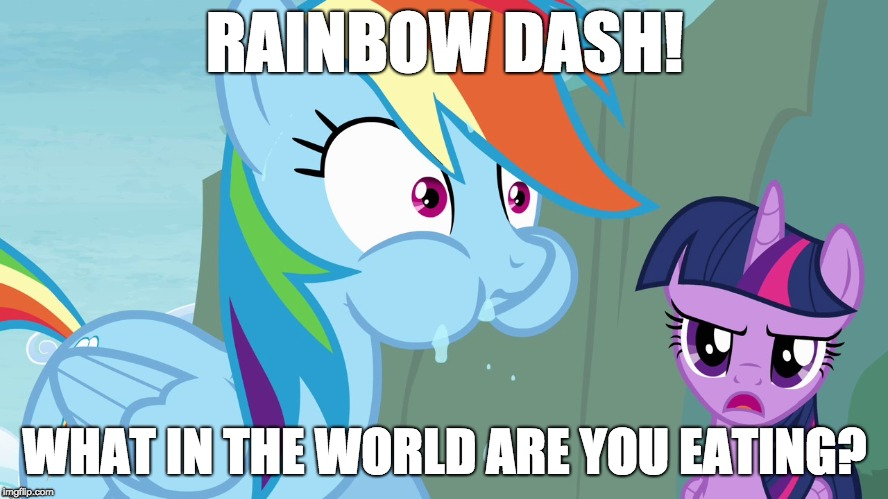 You probably don't want to know! | RAINBOW DASH! WHAT IN THE WORLD ARE YOU EATING? | image tagged in memes,funny,ponies,eating,rainbow dash,twilight sparkle | made w/ Imgflip meme maker
