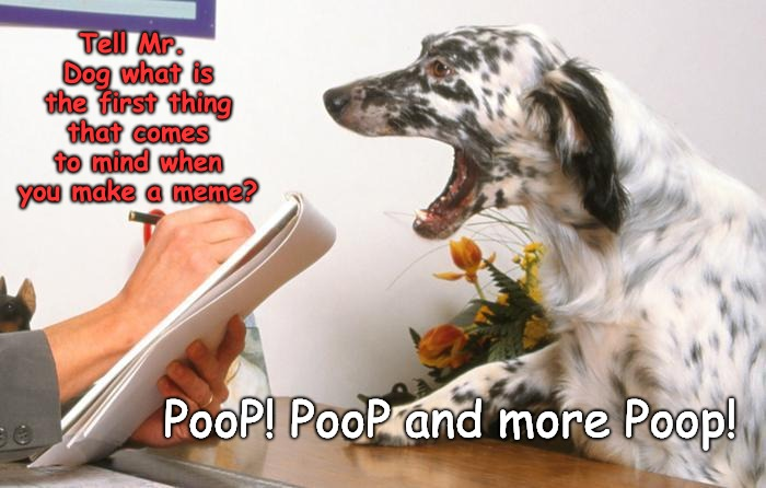 Raydog and the Therapist!!!  | Tell Mr. Dog what is the first thing that comes to mind when you make a meme? PooP! PooP and more Poop! | image tagged in raydog,therapist,dogs,poop | made w/ Imgflip meme maker
