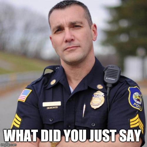 Cop | WHAT DID YOU JUST SAY | image tagged in cop | made w/ Imgflip meme maker