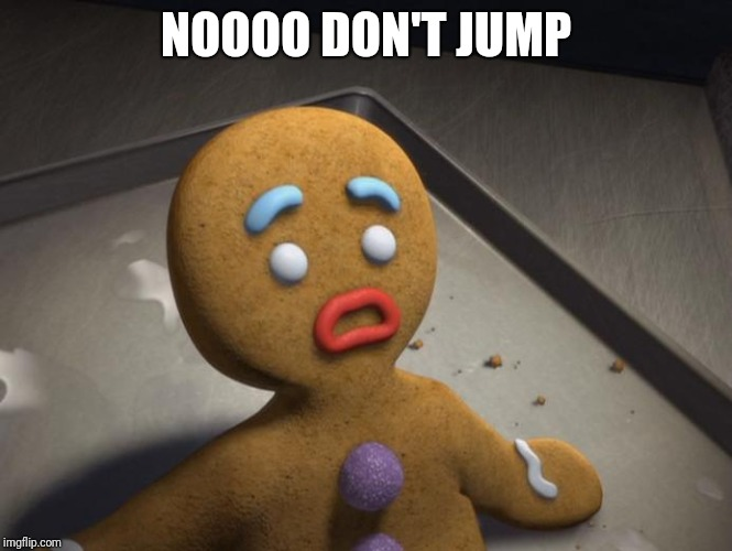 Gingerbread man | NOOOO DON'T JUMP | image tagged in gingerbread man | made w/ Imgflip meme maker