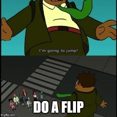 Do a flip! | DO A FLIP | image tagged in do a flip | made w/ Imgflip meme maker
