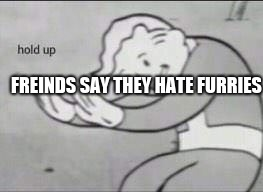 hold up | FREINDS SAY THEY HATE FURRIES | image tagged in fallout hold up,furry,furries,memes | made w/ Imgflip meme maker