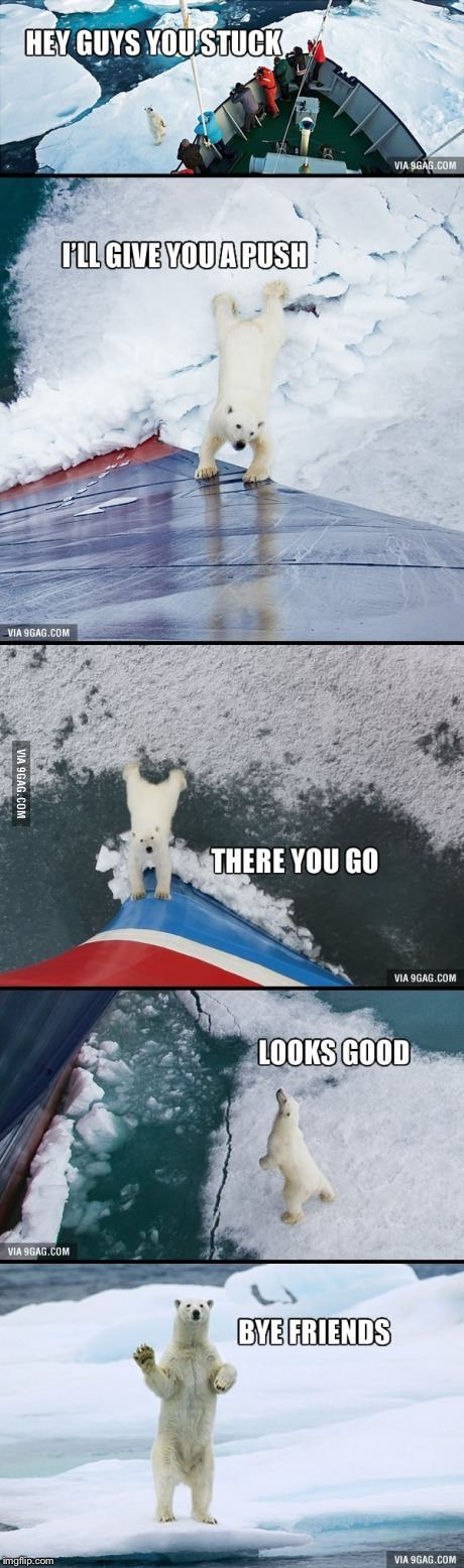 Everybody, meet Good Guy Polar Bear! | . | image tagged in memes,good guy greg,polar bear,ship,stuck,iceberg | made w/ Imgflip meme maker