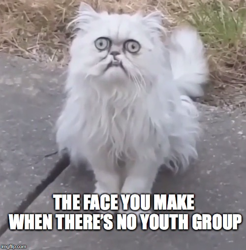 THE FACE YOU MAKE WHEN THERE'S NO YOUTH GROUP | image tagged in church,youth,cat,cats | made w/ Imgflip meme maker