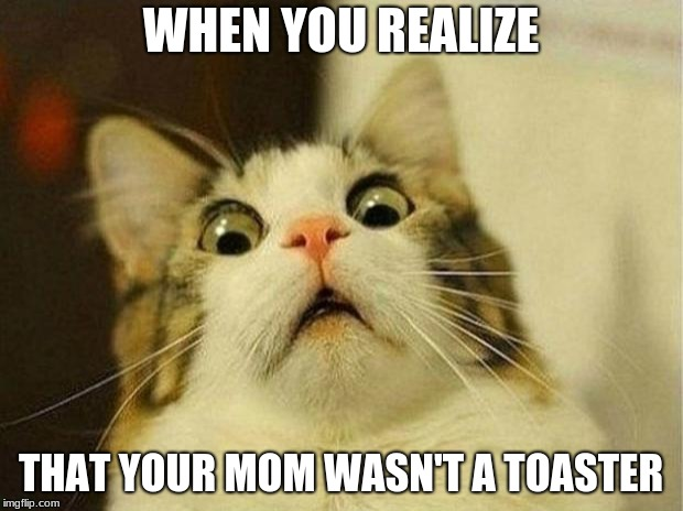 Scared Cat | WHEN YOU REALIZE THAT YOUR MOM WASN'T A TOASTER | image tagged in memes,scared cat | made w/ Imgflip meme maker