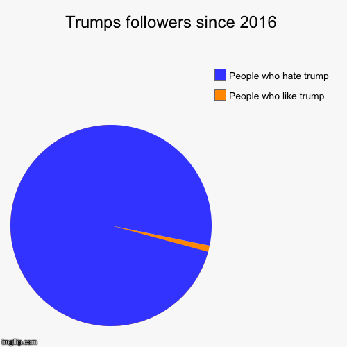 Trump pie chart | Trumps followers since 2016 | People who like trump, People who hate trump | image tagged in funny,pie charts | made w/ Imgflip chart maker
