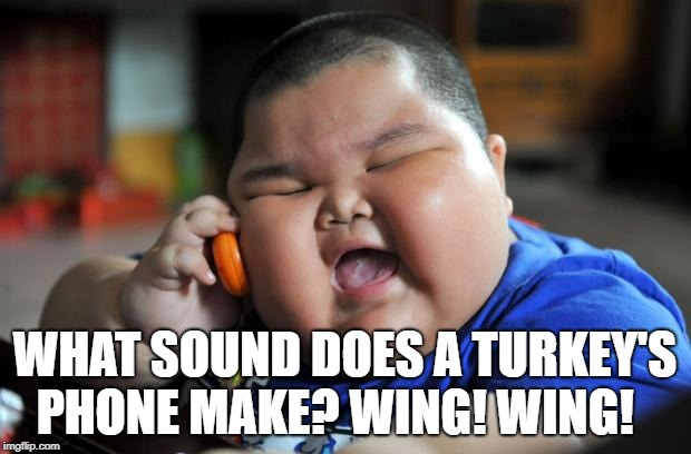 Fat Asian Kid | WHAT SOUND DOES A TURKEY'S PHONE MAKE? WING! WING! | image tagged in fat asian kid | made w/ Imgflip meme maker