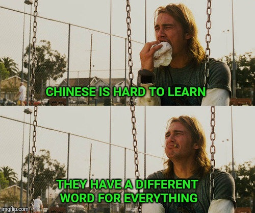 First World Stoner Problems | CHINESE IS HARD TO LEARN THEY HAVE A DIFFERENT WORD FOR EVERYTHING | image tagged in memes,first world stoner problems,chinese,words | made w/ Imgflip meme maker