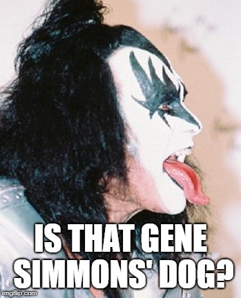 Gene Simmons profile tongue | IS THAT GENE SIMMONS' DOG? | image tagged in gene simmons profile tongue | made w/ Imgflip meme maker