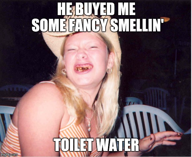 Redneck woman | HE BUYED ME SOME FANCY SMELLIN' TOILET WATER | image tagged in redneck woman | made w/ Imgflip meme maker