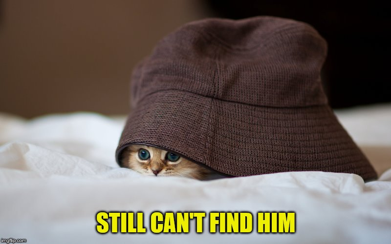 STILL CAN'T FIND HIM | made w/ Imgflip meme maker