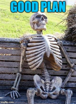 Waiting Skeleton Meme | GOOD PLAN | image tagged in memes,waiting skeleton | made w/ Imgflip meme maker