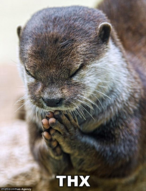 Thank you Lord Otter | THX | image tagged in thank you lord otter | made w/ Imgflip meme maker