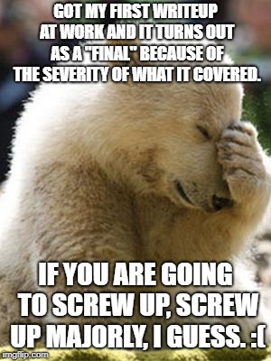 "Facepalm Bear |  GOT MY FIRST WRITEUP AT WORK AND IT TURNS OUT AS A ""FINAL"" BECAUSE OF THE SEVERITY OF WHAT IT COVERED. IF YOU ARE GOING TO SCREW UP, SCREW UP MAJORLY, I GUESS. :( 