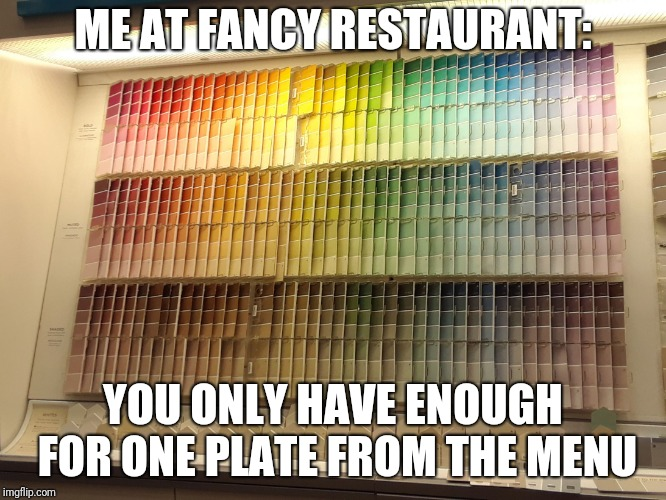 Choose Wisely | ME AT FANCY RESTAURANT: YOU ONLY HAVE ENOUGH FOR ONE PLATE FROM THE MENU | image tagged in choose wisely | made w/ Imgflip meme maker