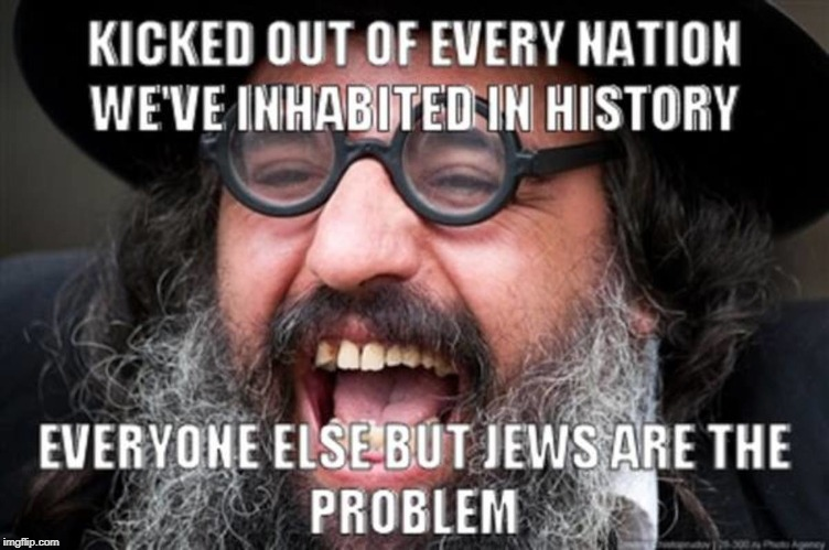 Everyone But Jews Are The Problem | image tagged in jew,jews,problems,problem,trouble,big trouble | made w/ Imgflip meme maker
