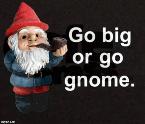 Go big or go ..... | image tagged in gnome | made w/ Imgflip meme maker