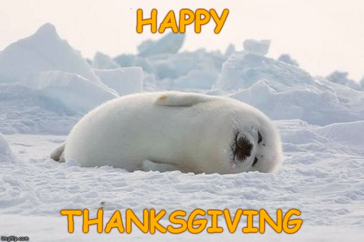 Everyone Enjoy Your Holiday (and Your Dinner !) | HAPPY THANKSGIVING | image tagged in memes,thanksgiving,happy thanksgiving,enjoy | made w/ Imgflip meme maker