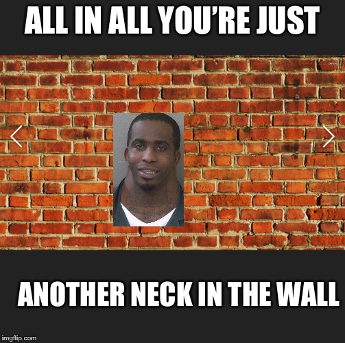 ALL IN ALL YOU'RE JUST ANOTHER NECK IN THE WALL | image tagged in neck | made w/ Imgflip meme maker