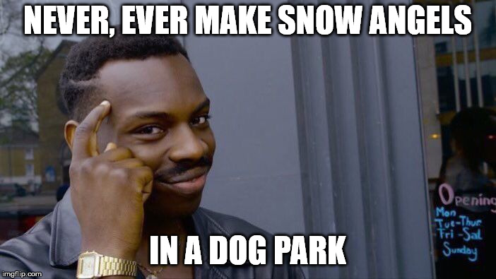 Roll Safe Think About It Meme | NEVER, EVER MAKE SNOW ANGELS IN A DOG PARK | image tagged in memes,roll safe think about it | made w/ Imgflip meme maker